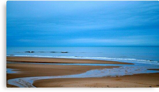 Balmedie Beach by Larissa  White Brown