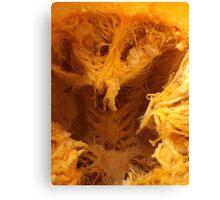 pumpkin guts  Canvas Print