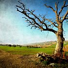 Countryside landscape (Textured Version) by Francesco Malpensi