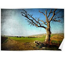 Countryside landscape (Textured Version) Poster