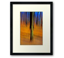 An Early Spring Afternoon Framed Print