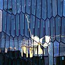 Reflecting Visions by Ritva Ikonen