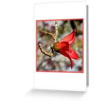 The World Is A Colorful Wonder ~ Part Twenty-Six Greeting Card