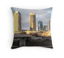 A Sudden Change of Light Throw Pillow