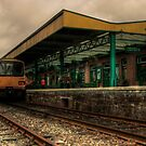 Okehampton Station  by Rob Hawkins