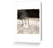 knuckles white Greeting Card