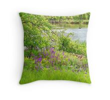 Refreshing On a Summer Day Throw Pillow