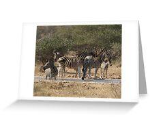 Zebra at Water - Moremi Botswana Greeting Card