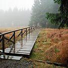 Rainy day in Siegmundsburg (Thuringia, Germany) by Lenka