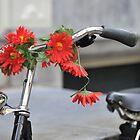 Hippie Bike by Kasia Nowak