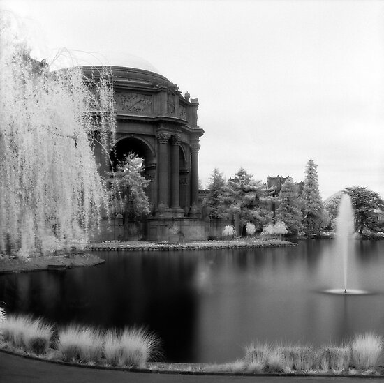Palace of Fine Arts, San Francisco by Rodney Johnson
