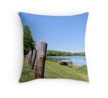 Great Place for A Picnic Throw Pillow