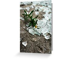 Broken Glass, Broken Flower Greeting Card