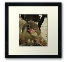 Penguin Stretch! Framed Print