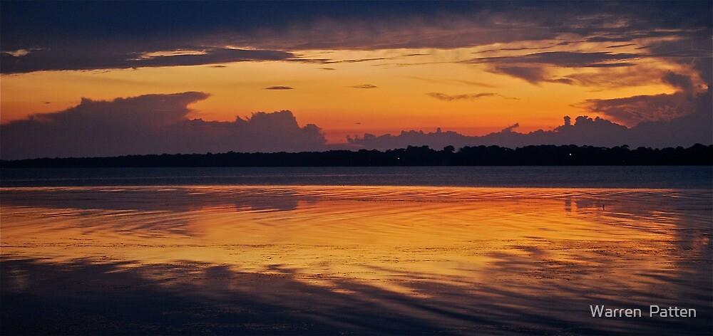 Morning Glory. 12-3-11 by Warren  Patten