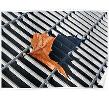 Grate Leaf Poster