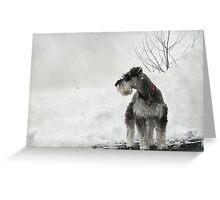 Big Snow Greeting Card