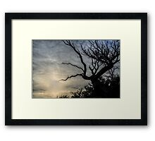 Dead or Alive Framed Print