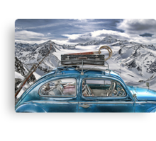 Beetle in the Alps Canvas Print
