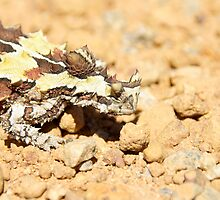 Thorny Devil by Kylie Jones