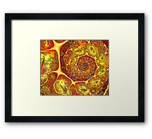 Land of Passion Framed Print
