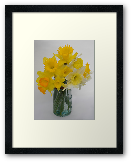 Country Spring Boka by NatureGreeting Cards ©ccwri