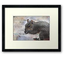 Love Them Nuts Framed Print