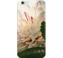 Sunlit iPhone Case/Skin