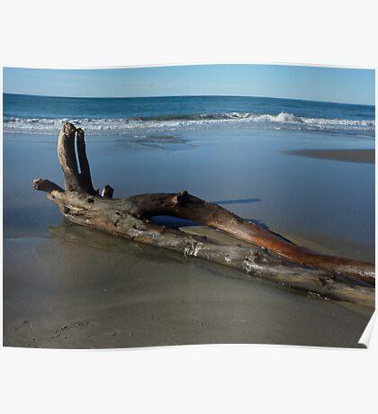 New Zealand Coastline - Returning to the Sea Poster