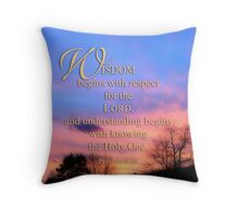 wisdom calendar cover Throw Pillow