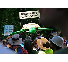 turtles against climate change Photographic Print