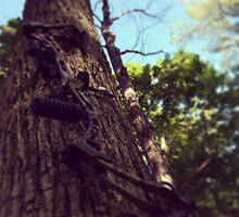 Archery by breexxxanna
