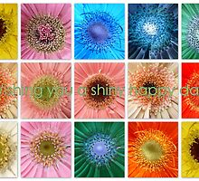 Have a shiny happy day by ©The Creative  Minds