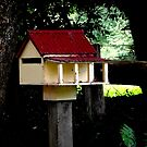 Small House. by waxyfrog