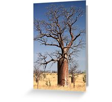boab trees Derby WA Greeting Card