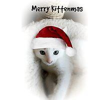 Kitten Kristmas Photographic Print