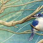Forest kingfisher card  (Todiramphus macleayii) by Laura Grogan