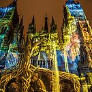 France. Normandy. Rouen. Cathedral. Light and Sound Show II. by vadim19