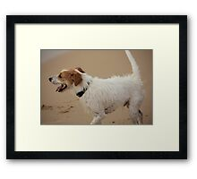 Master Of His Domain Framed Print