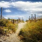 Summer's Departure by John Rivera