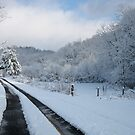 Road to Snowhere by Hank Eder