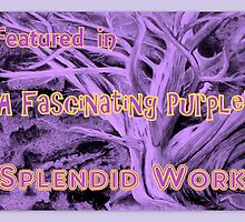 Banner : You featured in A Fascinating Purple by Pieta Pieterse
