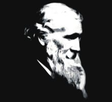 John Muir by Robin Brown