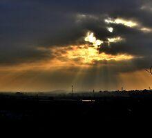 Panoramic Silhouette  by Sam Goodman