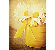 bucket of daises Photographic Print