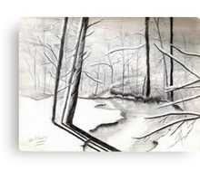 Woods in the Winter Canvas Print