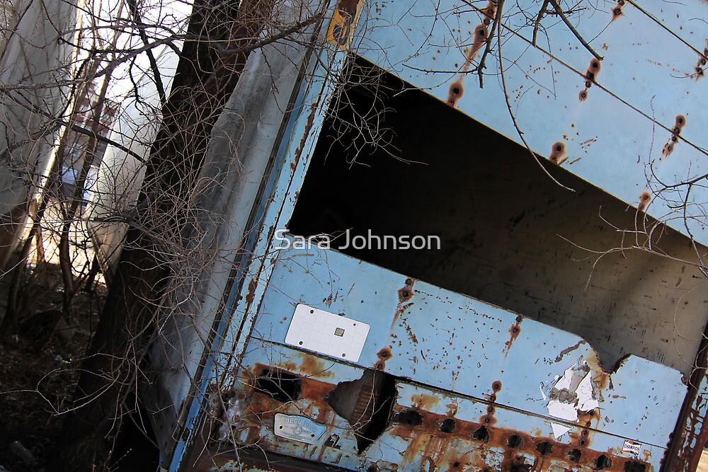 Mobile Home by Sara Johnson
