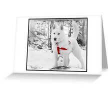 I don't care if someone is stuck again, I'm still not Lassie. Greeting Card