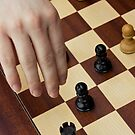 Kings and Pawns by Lita Medinger