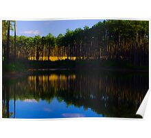 Blue Sky on Gated Community Pond Poster